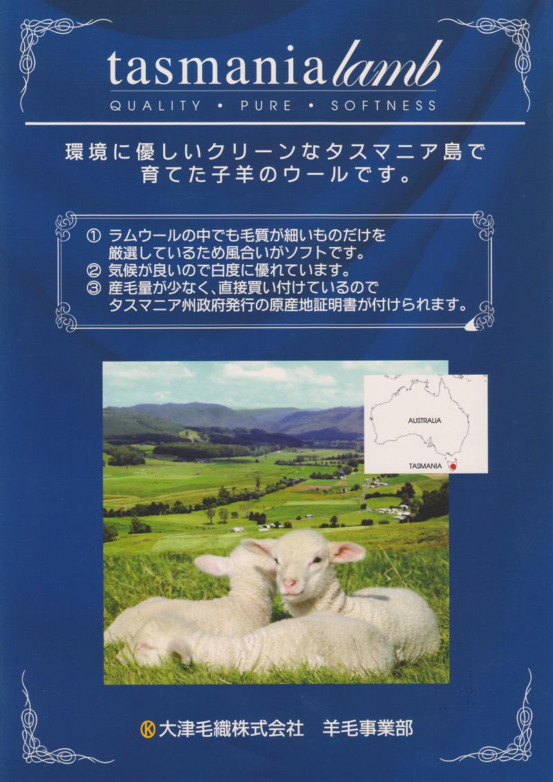 tasmania-lamb